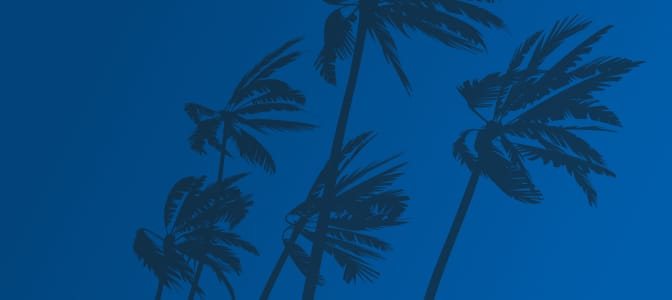 A collection of first aid supplies.